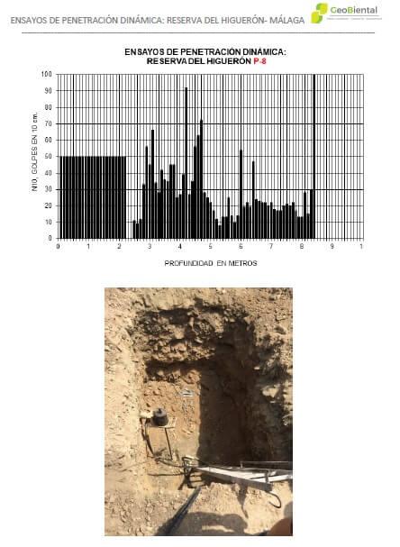 Informe ensayo-de-penetracion-dinamica-geobiental