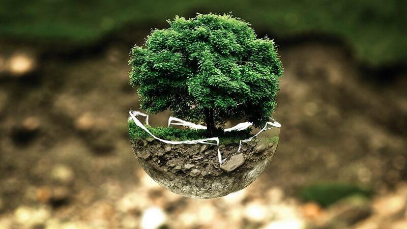 Instrumentos de prevención ambiental